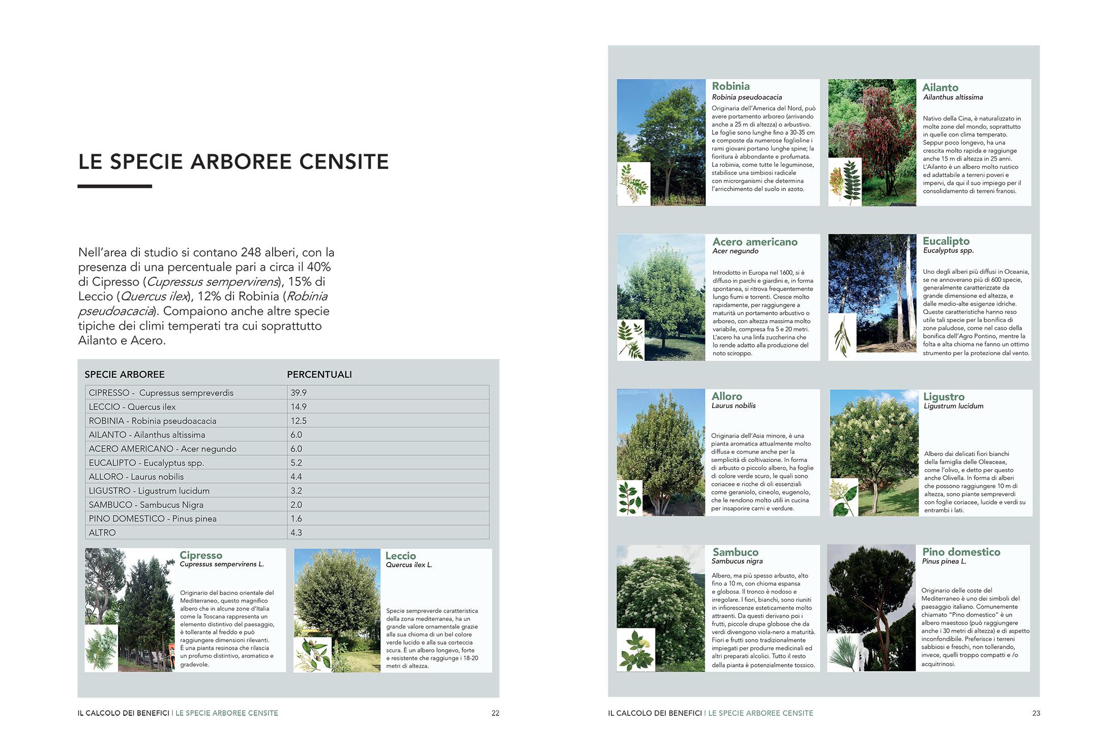 Immagini Di Piante E Alberi green benefits – parco cavallo pazzo – pnat